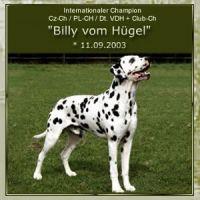 Billy-vom-Huegel