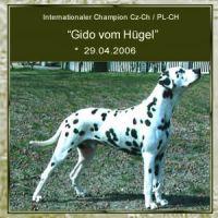 Gido-vom-Huegel