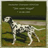 Jim-vom-Huegel