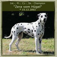 Zera-vom-Huegel